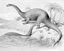 Badderende Brontosaurussen