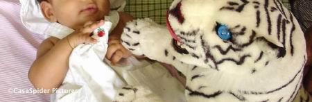 Diana (100 dagen) in de door Luchiano (8) in elkaar gezette Graco box op zondag 13 augustus 2006. Klik voor groter/sluiten.