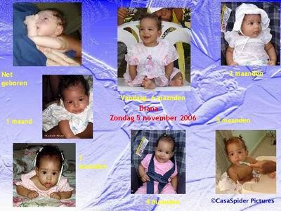 05.11.2006: Diana bereikt de leeftijd van een half jaar, zes maanden ofwel 184 dagen. Klik voor groter/sluiten.