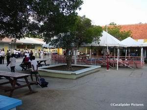 Donderdag 10 augustus 2006: Luchiano's eerste schooldag in klas 4B van de Marnix-school. Klik voor groter/sluiten.