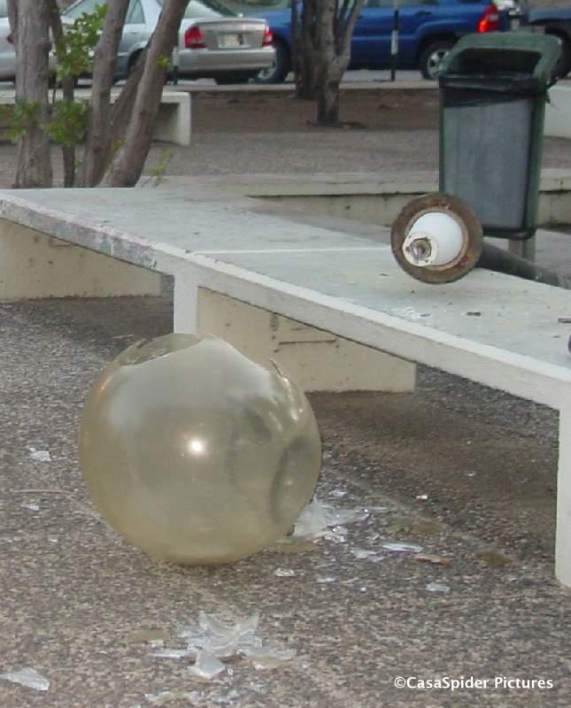 Zaterdag 27 januari 2007, Pleincafe Wilhelmina: In het parkje leunt Brian van Dejongones even tegen een lantaarnpaal die vervolgens met donderend geraas tegen de tegels te pletter slaat. Klik voor groter.