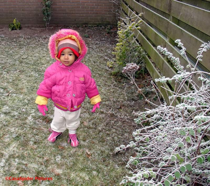 20.12.2007: Diana (1) verbaast zich over de (lichte) sneeuw in de tuin. Klik voor groter.