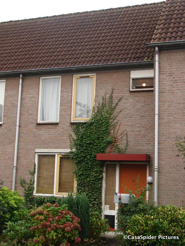 10.10.2007: Wordt dit het nieuwe huis van de Spiders in Rijen? Let op de brievenbus. Klik voor groter.