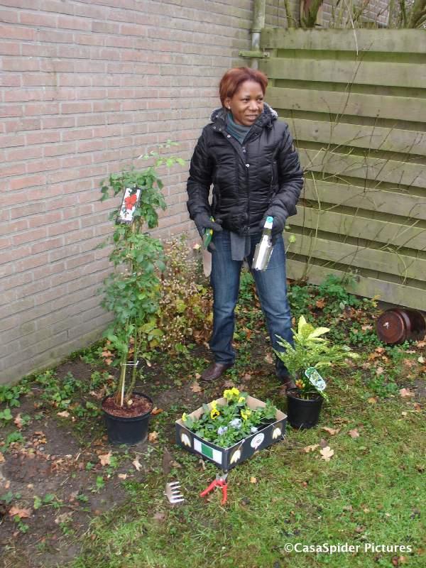 23.11.2007: Lucy is blij met haar nieuwe plantjes van de GardenMaster Rijen. Klik voor groter.