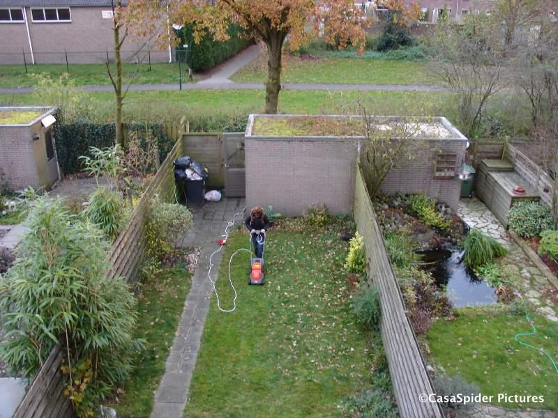 14.11.2007: Lucy maait ons het gras voor de voeten weg. Klik voor groter.