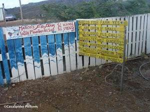 18.06.2007: Klas 4B van de Marnix-school bezoekt Marco's Fish-Farm. Klik voor groter.