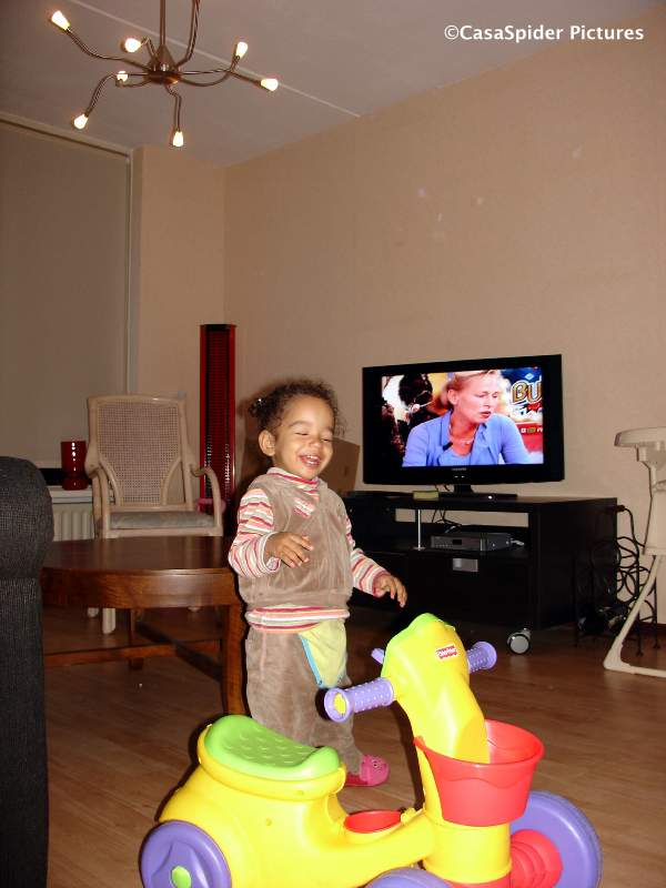 12.11.2007: Diana (1) heeft het goed naar haar zin in ons huis te Rijen. Klik voor groter.