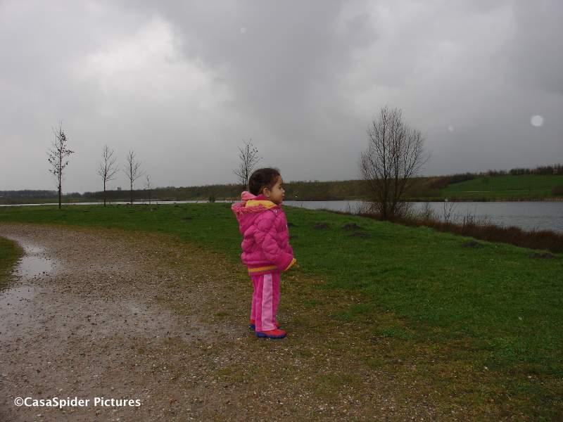 16.03.2008: Diana (1) staart over het ruige landschap bij het Water aan de Warande in Gilze. Klik voor groter.