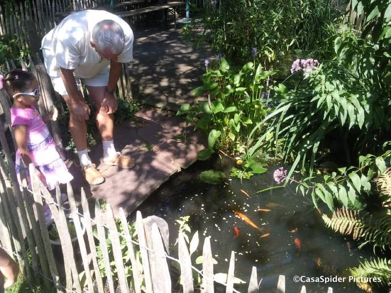 23.08.2009: Diana (3) en CasasPa kijken naar de vissen in de vijver. Klik voor groter.