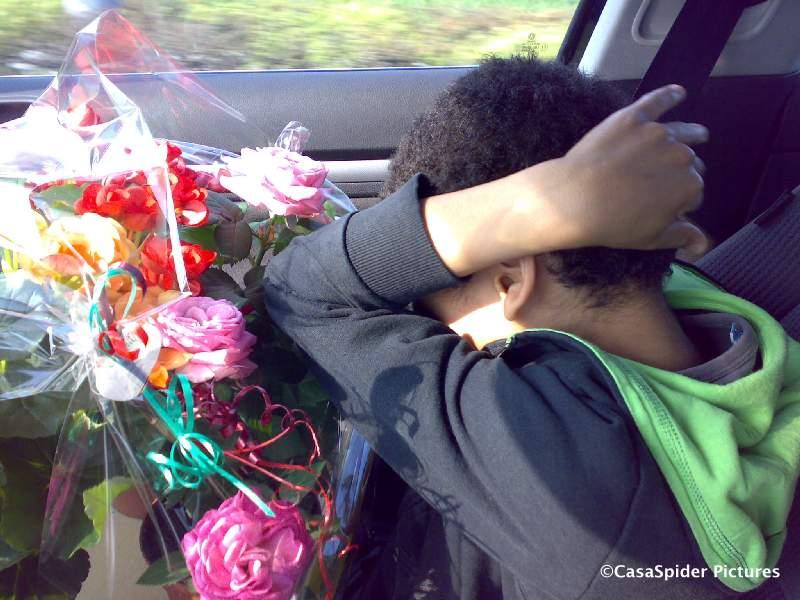 14.04.2009: Luchiano (11) is erg stoer met de bloemetjes van Garden Master Rijen op zijn schoot. Klik voor groter.