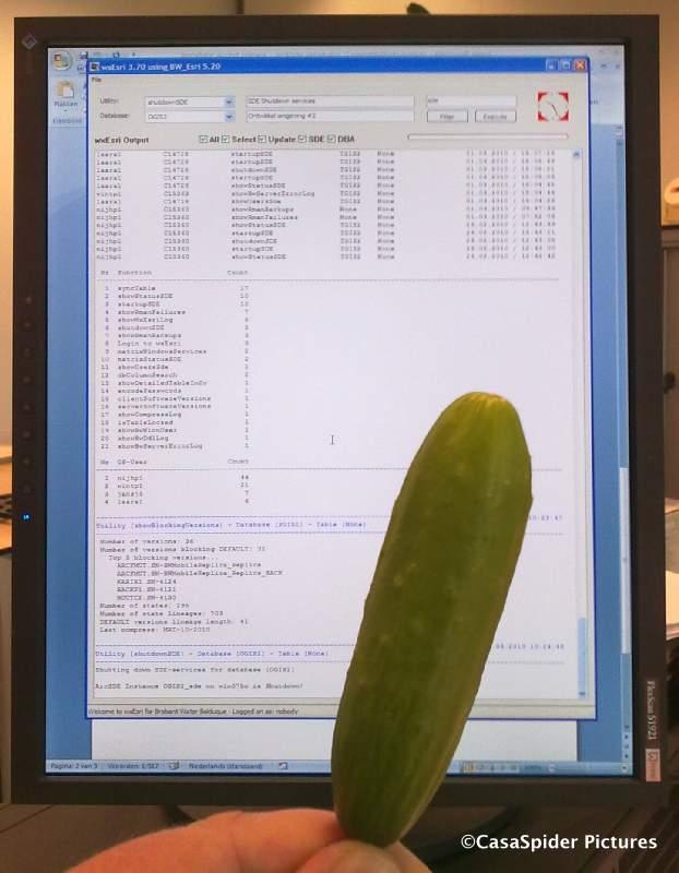 10.03.2010: De DBA's bij Brabant Water Den Bosch proberen eens een snackkomkommer. Klik voor groter.