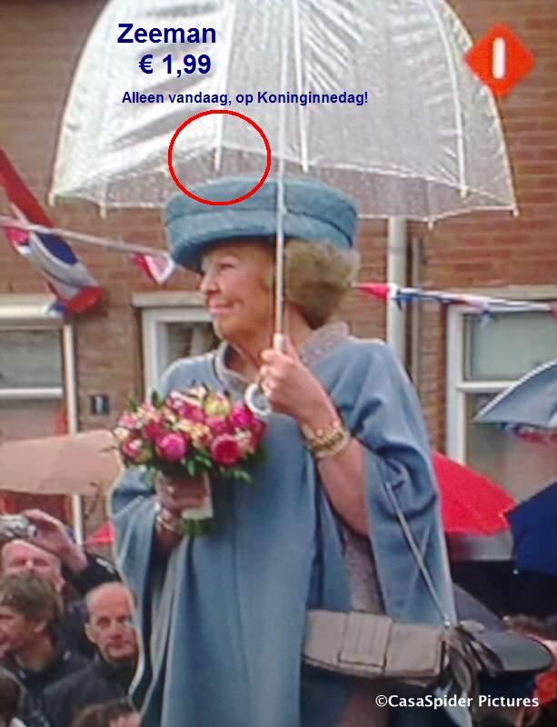 30.04.2010: Koningin Beatrix 30 jaar Vorstin, geen garantie op top-paraplu. Klik voor groter.