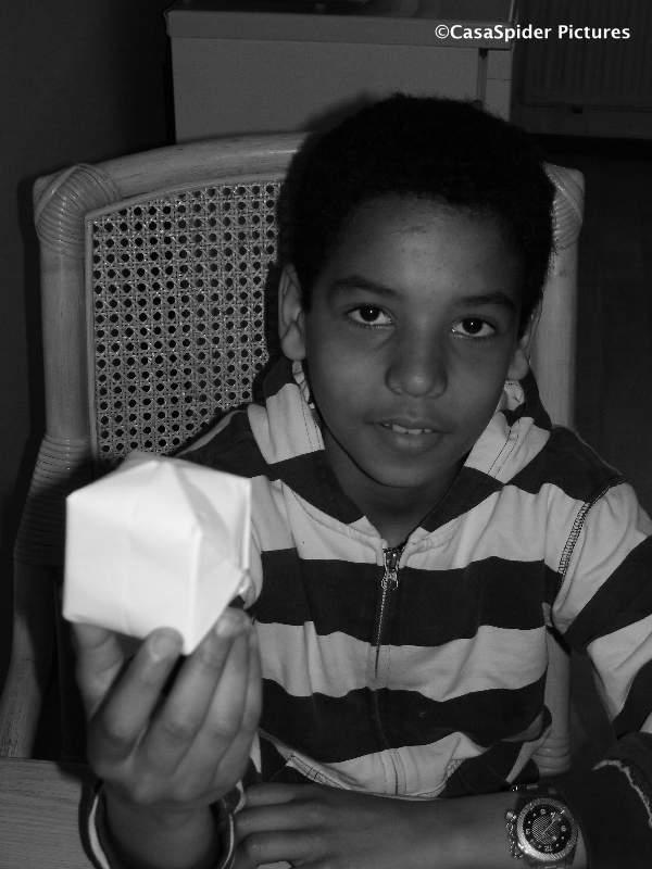 03.04.2010: Luchiano (12) leidt zichzelf met hulp van Rob's World op tot Origami Ninja Master. Klik voor groter.