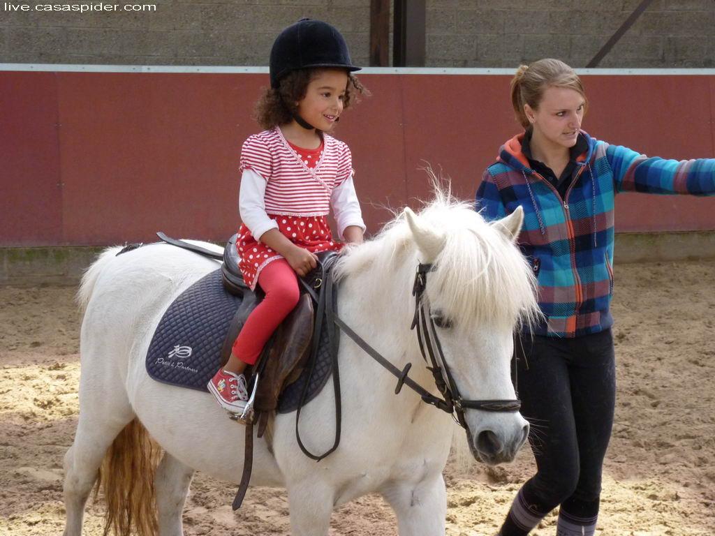 05.05.2011: Diana (5) berijdt voor het eerst een pony, hier bij Manege Thielen. Het is een verjaardagskado. Klik voor groter.